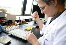 """Portal 180 - OMS: amenaza de bacterias resistentes """"nunca fue tan inmediata y urgente"""""""