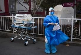 Portal 180 - La OMS preocupada por el coronavirus, primera muerte de un europeo