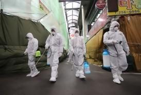 Portal 180 - Alerta máxima en Corea del Sur, Irán e Italia por el coronavirus