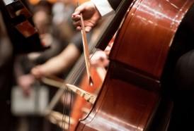Portal 180 - Emergencia golpea especialmente a los músicos que buscan seguir sonando