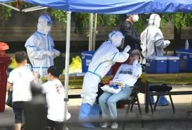 Portal 180 - Covid, pandemia y confinamiento: cómo cambió el mundo en 2020
