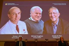 Portal 180 - Nobel de Medicina para tres descubridores del virus de la hepatitis C