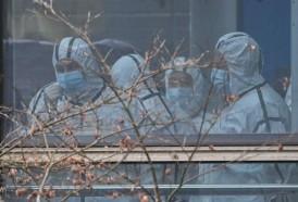 Portal 180 - Misión de OMS en China no halla aún datos contundentes sobre origen del covid-19