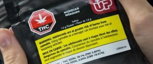 Portal 180 - Con THC libre y 30 gramos como límite de tenencia, Canadá legaliza cannabis recreativo