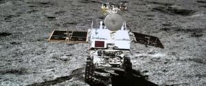 Portal 180 - El algodón germinado en la Luna no sobrevive a la larga y fría noche lunar