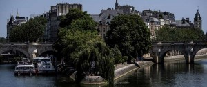 Portal 180 - ¿Pueden los árboles salvar a París del calentamiento global?