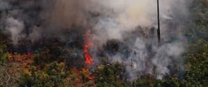 Portal 180 - Los incendios en Amazonía torpedean el acuerdo entre la UE y Mercosur