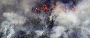Portal 180 - Bolsonaro moviliza tropas contra incendios en la Amazonía y rechaza presión internacional