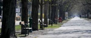 Portal 180 - Austria presenta su plan de levantamiento de medidas contra la pandemia