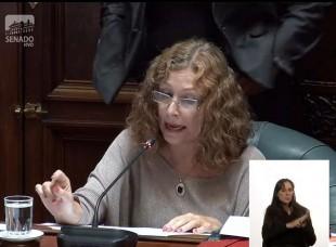 Portal 180 - La discusión en el Senado sobre el impuesto a las jubilaciones militares
