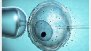 Reproducción asistida de alta complejidad llegó a meseta de casos anuales | 180
