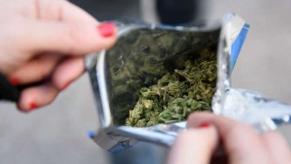 Mercado ilegal de marihuana perdió más de 22 millones de dólares desde la regulación | 180