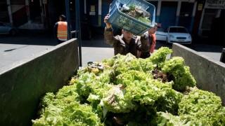 Considerable aumento de la canasta de frutas y hortalizas | 180
