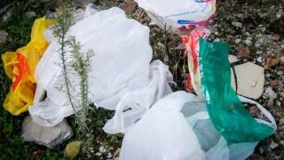 Senado aprobaría ley de bolsas plásticas | 180