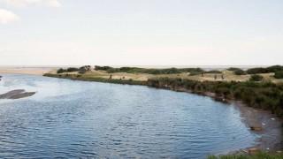 Científicos exigen corregir decreto que limitó investigación de recursos acuáticos | 180