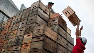 Abundancia de oferta empuja a la baja los precios de frutas y verduras | 180