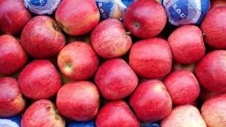 Llegaron las manzanas y bajaron los precios en el Mercado Modelo | 180