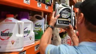 Roundup, de Monsanto, nuevamente considerado cancerígeno por un jurado de EEUU | 180