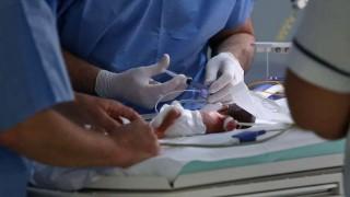 Aumento en prematurez extrema elevó la tasa de mortalidad neonatal en el Pereira Rossell | 180