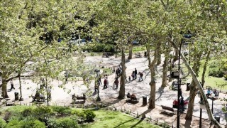 Intendencia dejará de usar glifosato en las áreas verdes de Montevideo | 180