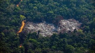Deforestación amazónica de Brasil bate récord desde 2008 | 180