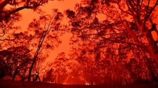 La última década es la más caliente registrada hasta la fecha | 180