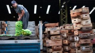 Mercado Modelo cerró el tercer año con récord de ingreso de frutas y hortalizas | 180