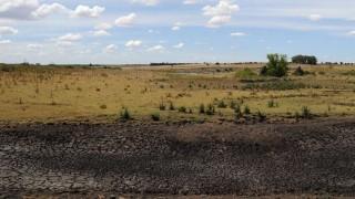 Gobierno amplía el área declarada bajo emergencia agropecuaria | 180