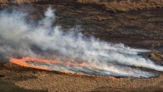 La biodiversidad del Delta del Paraná, amenazada por incendios históricos | 180