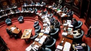 Viáticos sin boleta: el debate en el Senado | 180