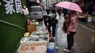 OMS pide suspender la venta de mamíferos salvajes vivos en mercados por riesgos sanitarios | 180