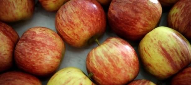 Portal 180 - No hay que pelar la manzana: buen uso de agroquímicos no perjudica el consumo