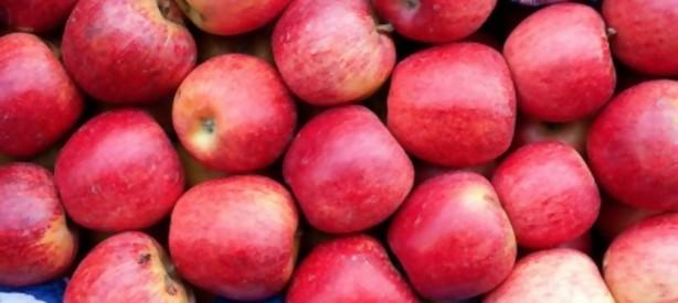 Portal 180 - Llegaron las manzanas y bajaron los precios en el Mercado Modelo