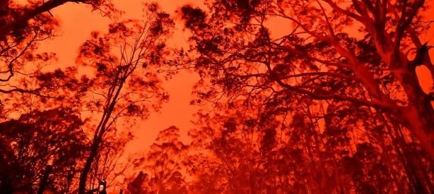 Portal 180 - La última década es la más caliente registrada hasta la fecha