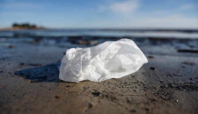 Gobierno da prioridad a ley que prohíbe bolsas plásticas gratuitas