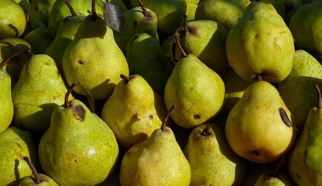 Cultivo de pera se repone luego del fracaso de la cosecha de 2016