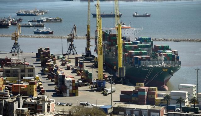 Exportaciones cayeron 8,3% en enero