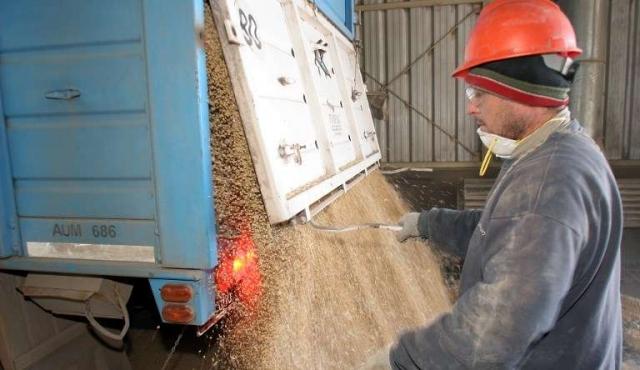 Este año puede tener exportaciones récord de soja