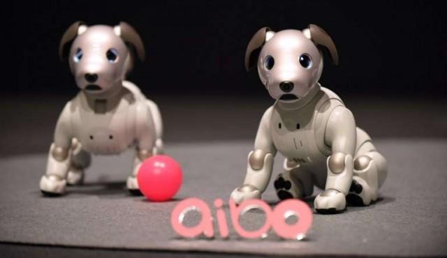 Sony presentó la nueva versión del perro robot Aibo