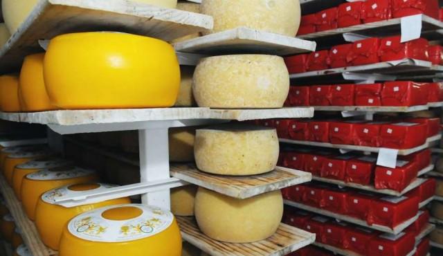 Aumento de precios compensa baja en volumen de exportaciones lácteas