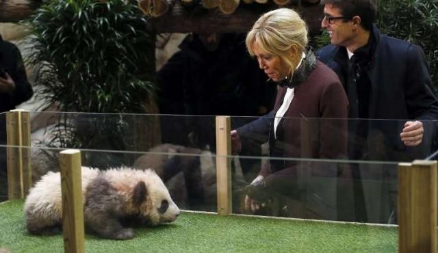 Brigitte Macron bautizó al primer bebé panda de Francia