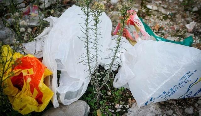 Avanza ley que prohíbe bolsas plásticas no sean biodegradables