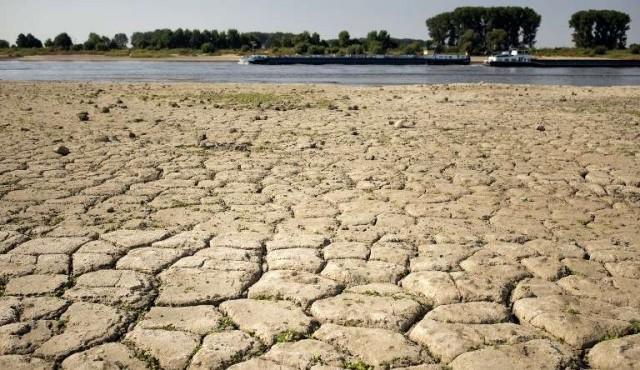 """La Tierra en riesgo de caer en un irreversible estado """"invernadero"""""""
