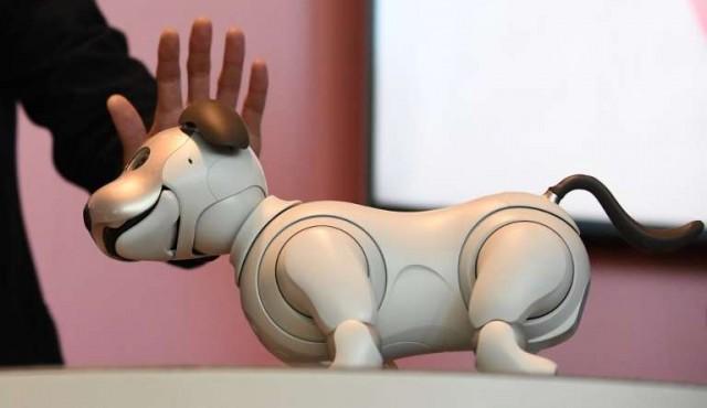 Sony venderá su mascota con inteligencia artificial en EE.UU.