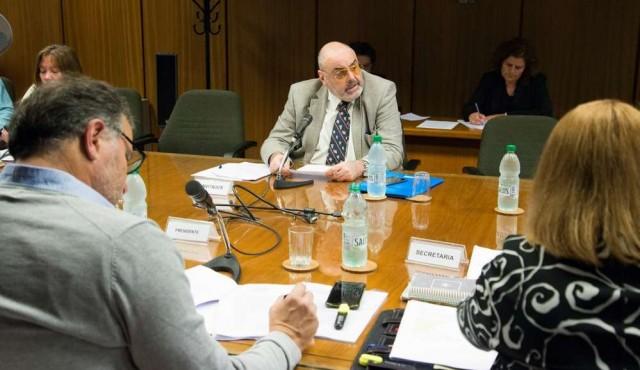 Borrelli opinó a favor de Casal sin asesoramiento tributario