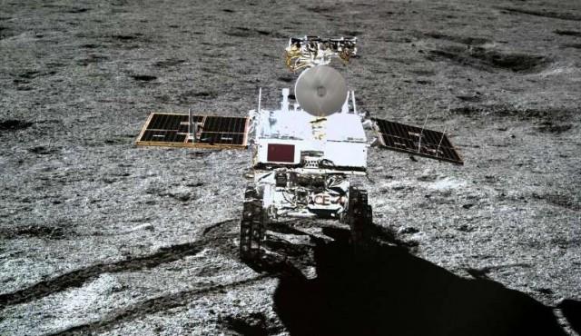 El algodón germinado en la Luna no sobrevive a la larga y fría noche lunar