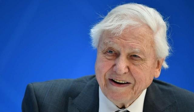 """No desperdicien el """"capital"""" de la naturaleza, pidió David Attenborough"""