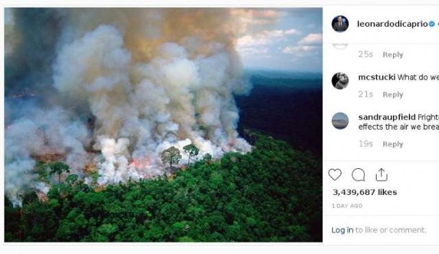 Personalidades contribuyen a desinformar sobre la Amazonia