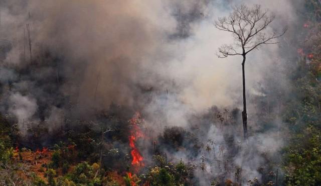 Los incendios en Amazonía torpedean el acuerdo entre la UE y Mercosur
