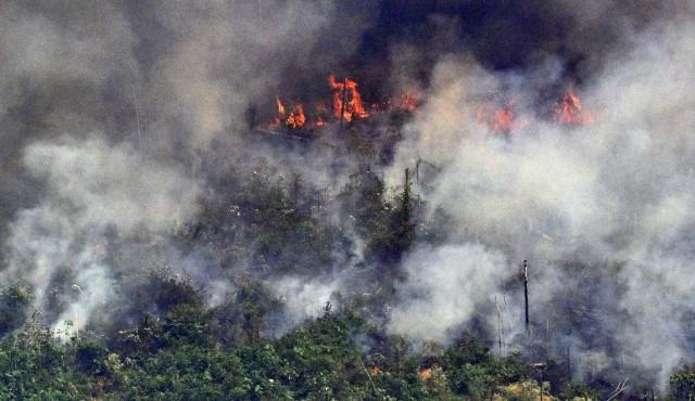 Bolsonaro moviliza tropas contra incendios en la Amazonía y rechaza presión internacional